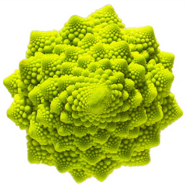 Hypnotic cabbage